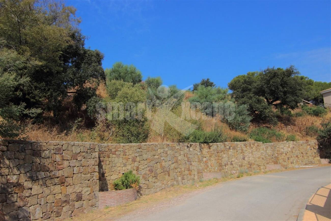 P5498 Plot in Elviria (12) (Large)