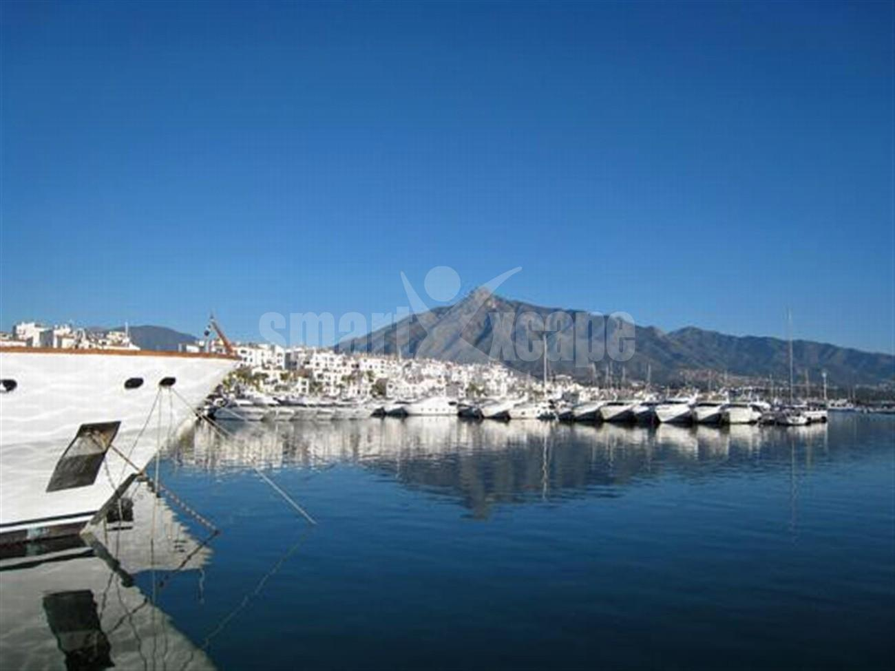 A5591 Frontline beach apartment Puerto Banus 14 (Large)
